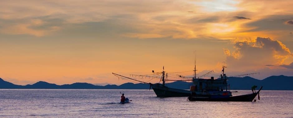 Squid fishing boats